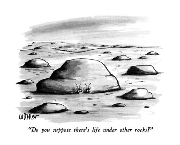 Pokes Wall Art - Drawing - Do You Suppose There's Life Under Other Rocks? by Warren Miller