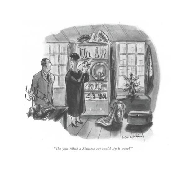 Pet Store Drawing - Do You Think A Siamese Cat Could Tip It Over? by Helen E. Hokinson
