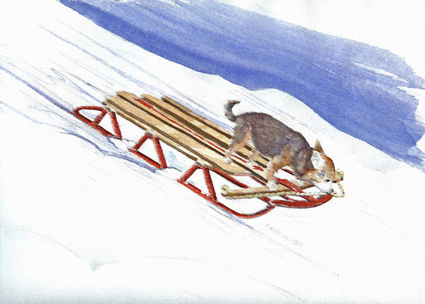 Chihuahua Painting - Dobby Sledding Downhill  by P Anthony Visco
