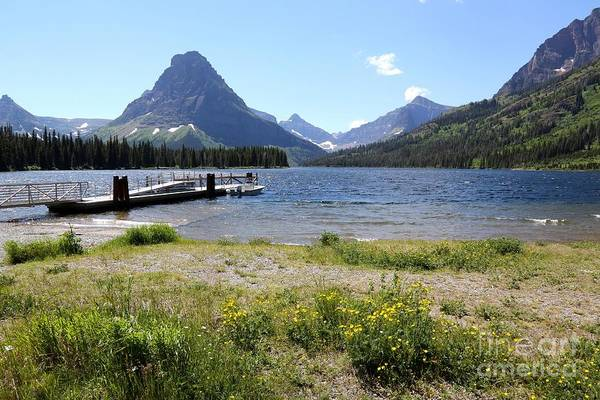 Photograph - Dock And Wildflowers At Lower Two Medicine Lake by Carol Groenen