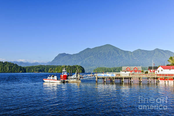 Photograph - Dock In Tofino by Elena Elisseeva