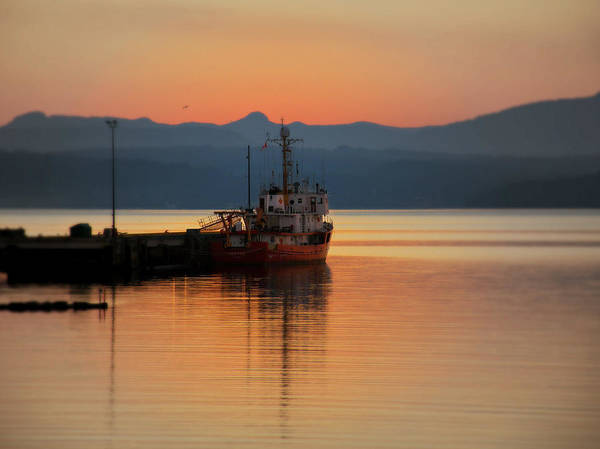 Photograph - Docked At Dusk by Micki Findlay