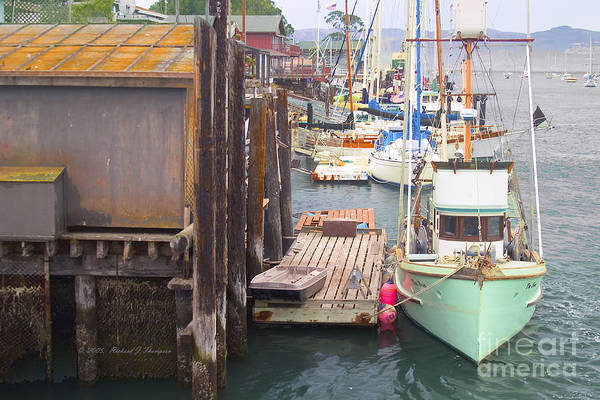 Photograph - Docked Fishing Boats by Richard J Thompson