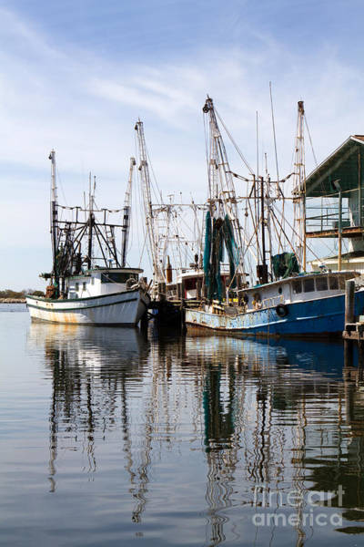 Docked Shrimp Boats Art Print