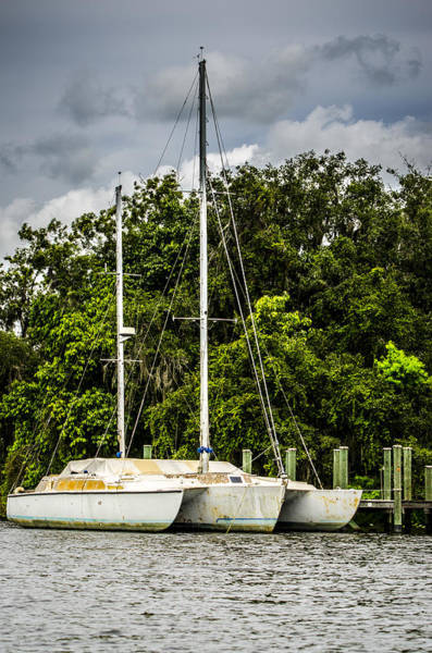 Photograph - Docked Trimaran by Carolyn Marshall