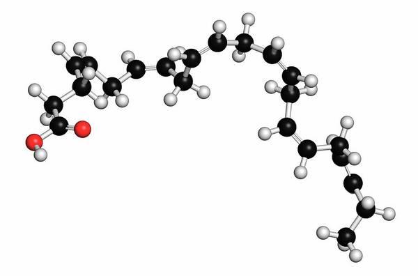 Omega Photograph - Docosahexaenoic Acid Molecule by Molekuul/science Photo Library