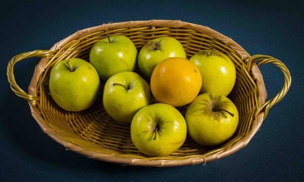 Apple Peel Wall Art - Photograph - Doctors Fruit by Jean Noren