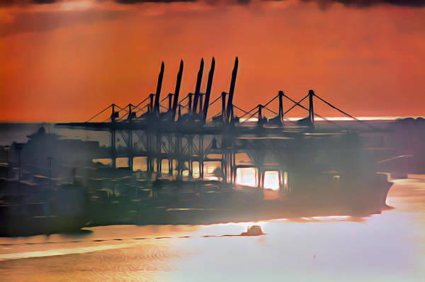 Digital Art - Dodge Island Cranes by Patrick M Lynch