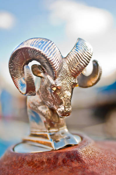 Vintage Hood Ornaments Photograph - Dodge Ram Hood Ornament 3 by Jill Reger