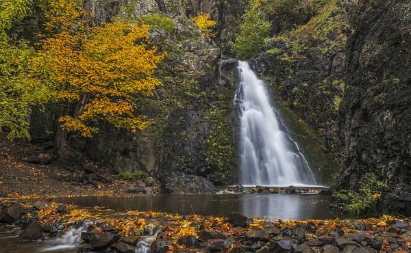 Photograph - Dog Creek Falls by Loree Johnson
