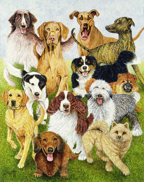 Different Painting - Dog Days by Pat Scott