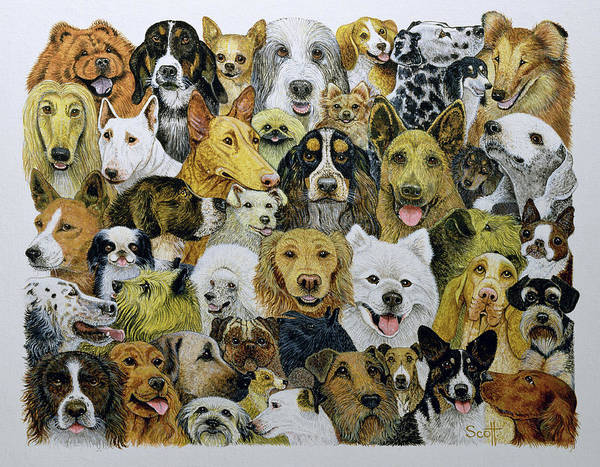 Doggy Wall Art - Painting - Dog Friends  by Pat Scott