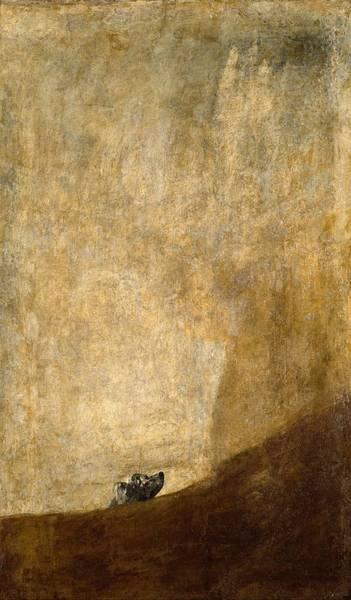 Prado Wall Art - Painting - Dog Half-submerged by Francisco Goya