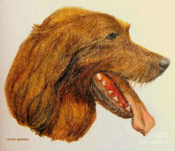 Painting - Dog Iphone Cases Smart Phones Cells And Mobile Phone Cases Carole Spandau 313 by Carole Spandau