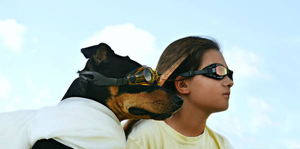 Gods Children Wall Art - Photograph - Dog Is My Co-pilot by Laura Fasulo