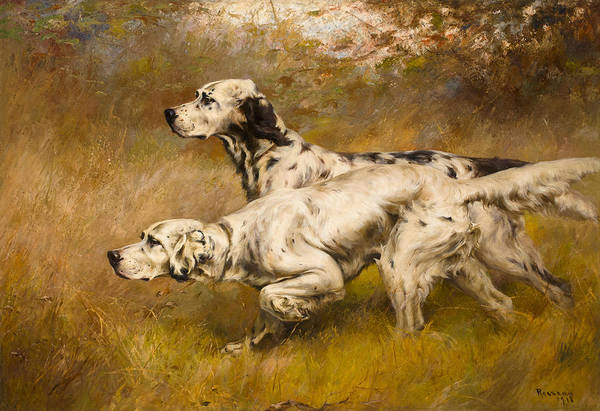 Field Spaniel Painting - Dog by Percival Leonard Rosseau