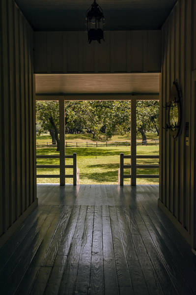 Photograph - Dog Trot At Lbj Birthplace by Joan Carroll