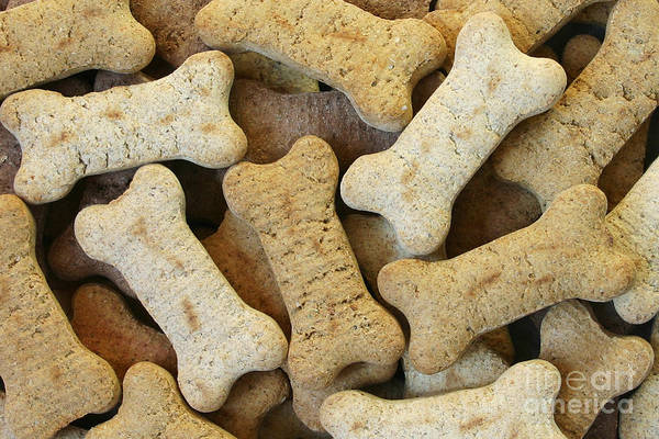 Dog Biscuit Photograph - Doggie Feast by Patty Colabuono
