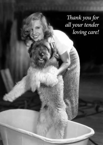 Dog Walker Photograph - Doggy Bath Greeting Card by Everett