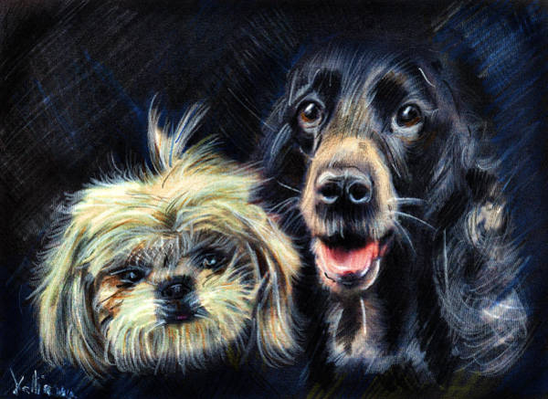 Drawing - Dogs - Pencil Drawing by Daliana Pacuraru