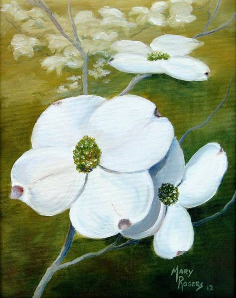 Mary Rogers Painting - Dogwood Blossoms by Mary Rogers