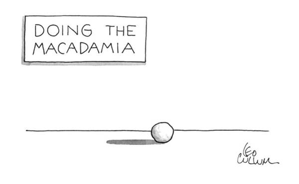 November 25th Drawing - Doing The Macadamia by Leo Cullum