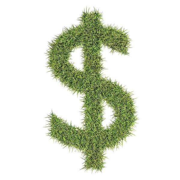 Environmental Issue Wall Art - Photograph - Dollar Symbol by Geoff Kidd