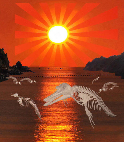 Digital Art - Dolphin Bay Taiji Cove by Eric Kempson