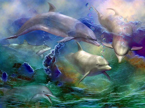 Dolphin Dream Art Print