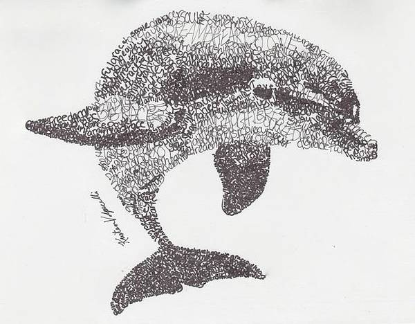 Dolphins Wall Art - Drawing - Dolphin by Michael Volpicelli