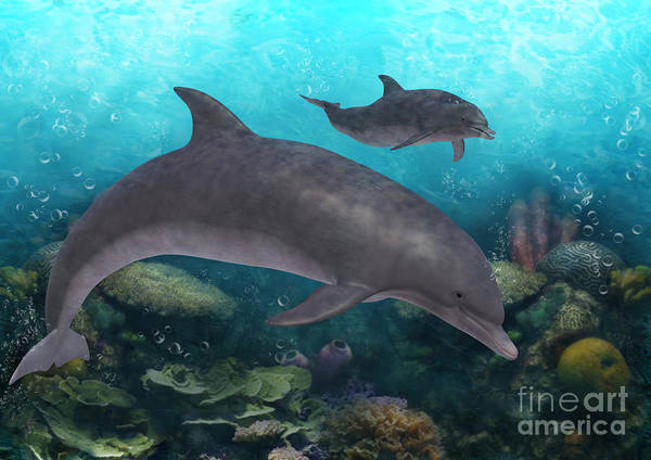 Digital Art - Dolphins Under The Sea by Elle Arden Walby