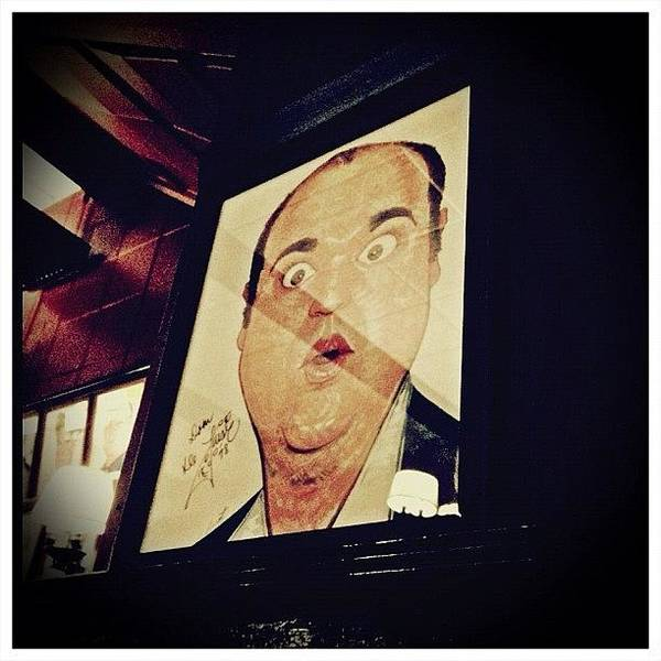 Celebrity Wall Art - Photograph - Dom Deluise by Natasha Marco