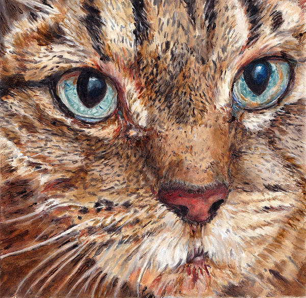 Wall Art - Painting - Domestic Tabby Cat by Portraits By NC