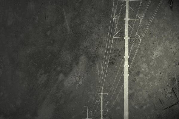 Photograph - Domestic Volts by Mark Ross