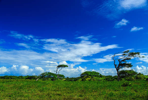 Puerto Plata Photograph - Dominican Countryside With Clouds And Blue Skies by Dmitry Sergeev