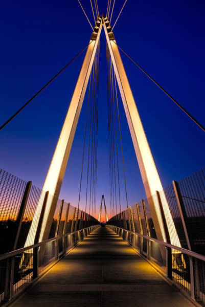 Silicon Valley Wall Art - Photograph - Don Burnett Pedestrian And Bicycle Bridge by Alexis Birkill