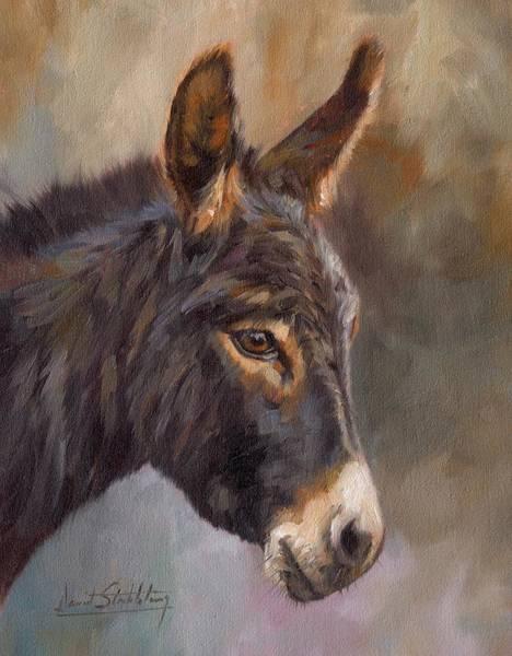 Wall Art - Painting - Donkey by David Stribbling