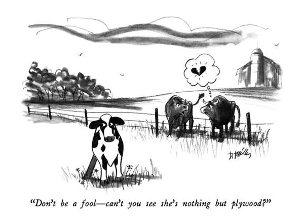 Rural Drawing - Don't Be A Fool - Can't You See She's Nothing But by Donald Reilly