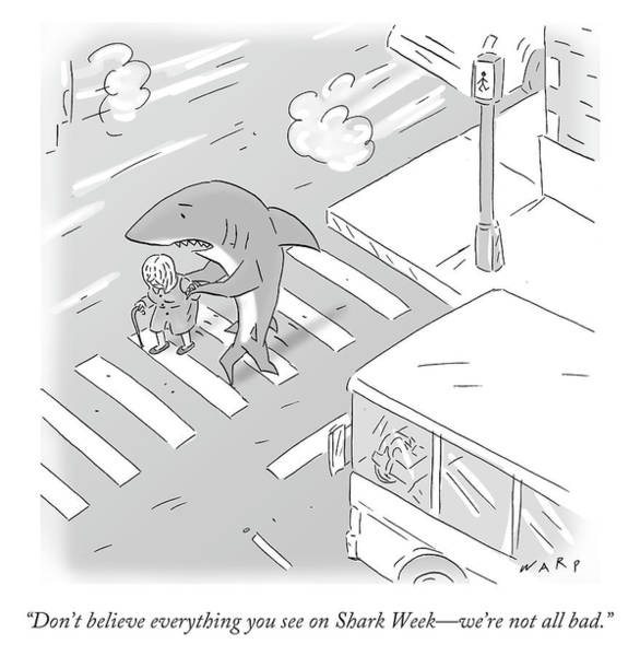 Sharks Drawing - Don't Believe Everything You See On Shark Week by Kim Warp