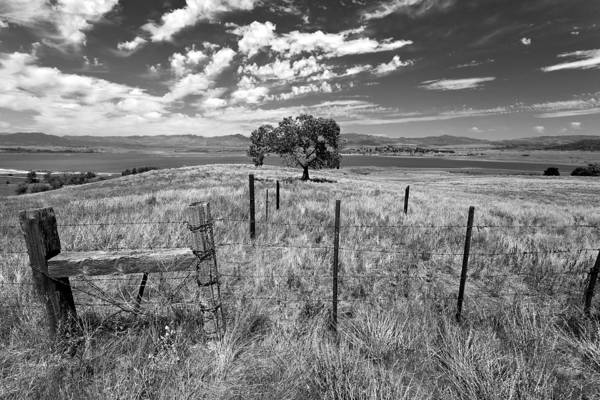 Prarie Photograph - Don't Fence Me In - Black And White by Peter Tellone