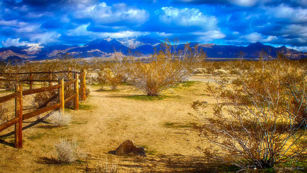Photograph - Dont Fence Me In by Wayne Wood