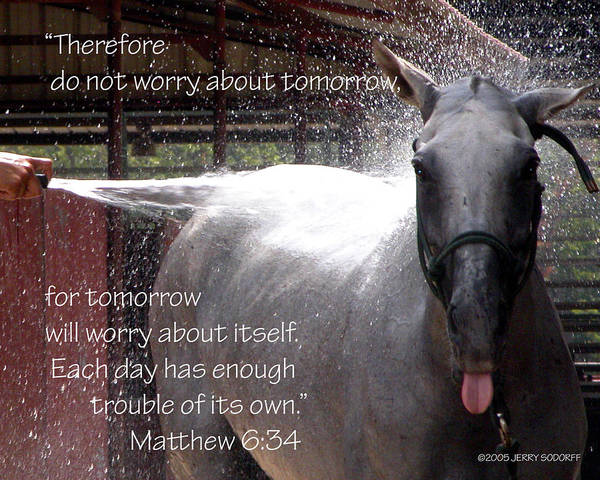 Photograph - Don't Worry 21033 by Jerry Sodorff