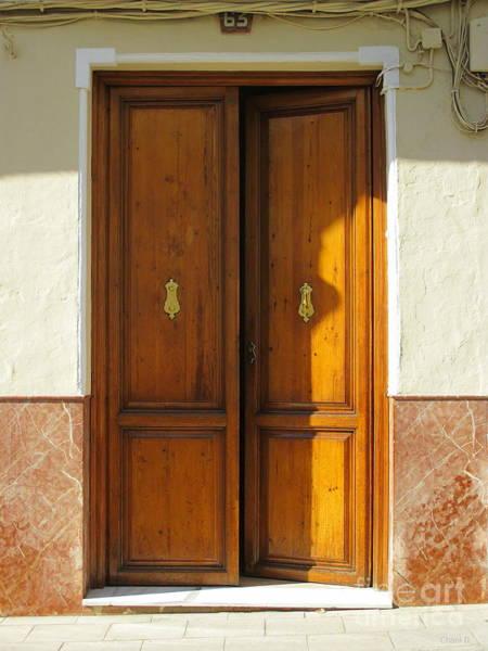 Photograph - Door In Archidona by Chani Demuijlder