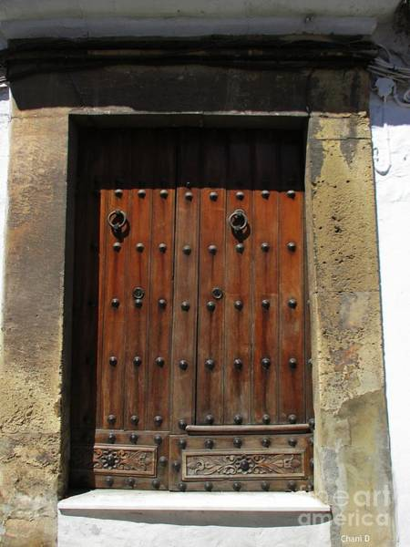 Photograph - Door In Ronda by Chani Demuijlder