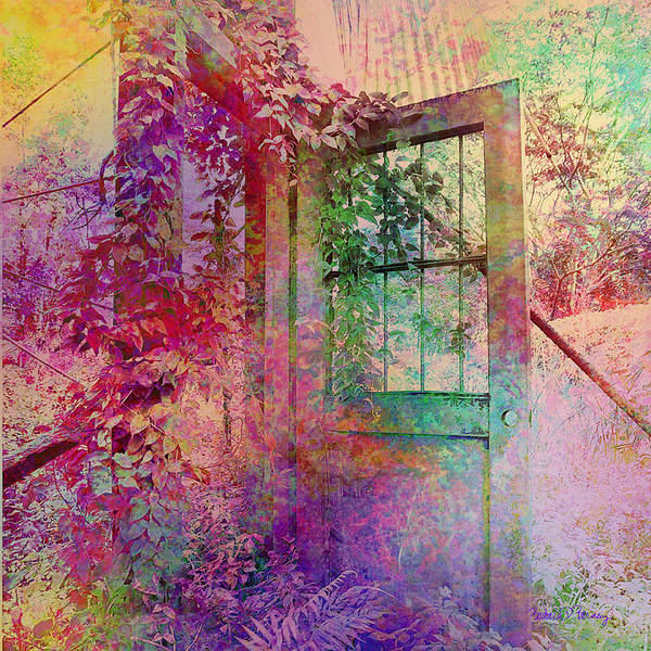 Digital Art - Door To My Dreams by Barbara Berney