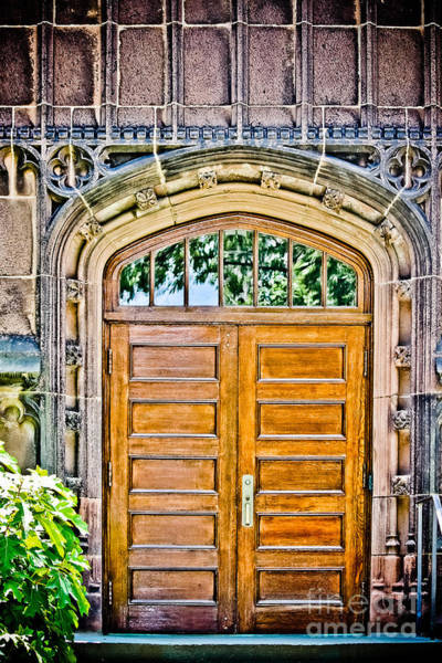 Wall Art - Photograph - Doors Of Princeton University by Colleen Kammerer