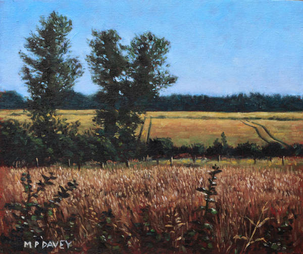 Painting - Dorset Countryside Golden Fields In Summer by Martin Davey