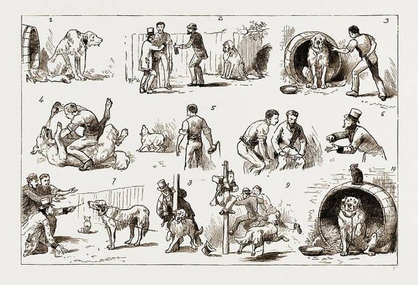 Dosing A Dog, 1883 1. Our St. Bernard Showed Symptoms Art Print