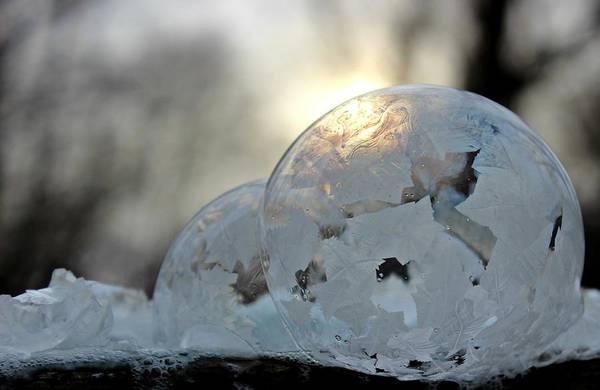Photograph - Double Bubble by Candice Trimble
