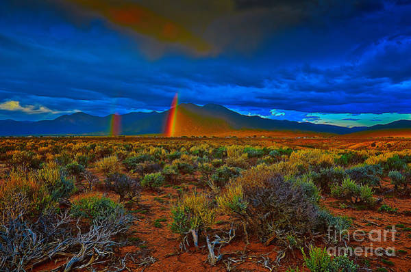 Photograph - Double by Charles Muhle